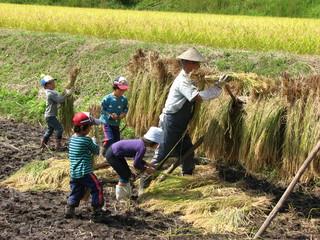 農業体験7.JPG